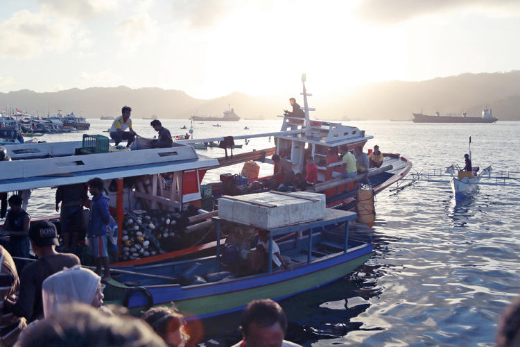 <p>That digital identity also tracks the audit information that proves that fish were caught legally and sustainably.</p>