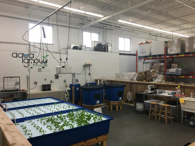 <p>It also wants to use the farm to call attention to the fact that cities need more ways to get fresh, healthy food for people who can't afford to buy it.</p>