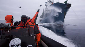 "U.S. Judge Calls Sea Shepherd Conservation Group ""Pirates"""