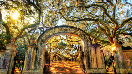 How Savannah Has Transformed Into The Business Belle Of The South